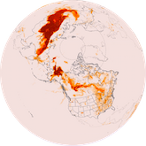 Arctic Fires Summer 2019 - fine particulates