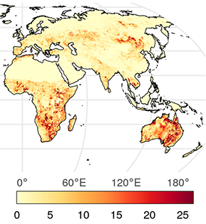 Satellite Monitoring of Global Surface Soil Organic Carbon Dynamics Using the SMAP Level 4 Carbon Product thumbnail